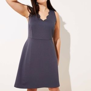 LOFT Plus Coastal Grey Scalloped Sheath Dress